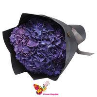 купить Монобукет из Фиолетовых гортензий в Кишинёве