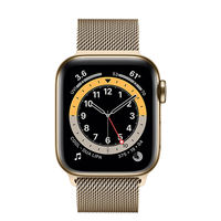 Apple Watch Series 6 GPS+ Cellular, 40mm,Stainless Steel  with Gold Milanese Loop M06W3 GPS, Gold