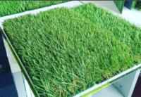 Iarba artificiala gazon verde Lucy 40