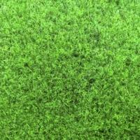 Искусственная трава/мох, GREEN 20 NP