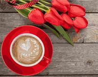 Pictura pe numere 40x50 Cafea cu lalele VA1055