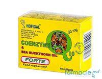 Coenzima Q10 30mg caps. N40 (Hofigal)