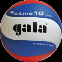 Мяч волейбольный 5581 Gala Pro Line 10 (1135)