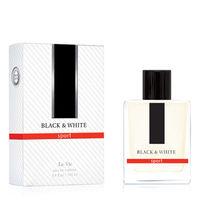 ТУАЛЕТНАЯ ВОДА BLACK & WHITE 100мл