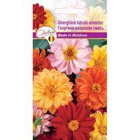 Семена  Георгина махровая смесь  0,15 gr DS
