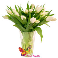 Белые голландские  тюльпаны поштучно