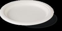 Тарелка FRP 17-1