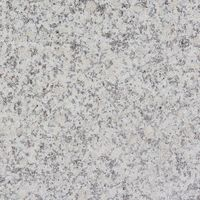 Granit leopard white G603 fiamat 60x30x1,5cm