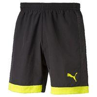 Puma IT evoTRG Woven Shorts