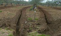 Система подземного капельного орошения для садов и виноградников - Ирритек
