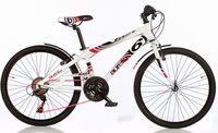 "Dino Bikes Fast Boy 24"" 1024 B-05"