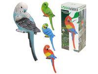 купить Попугай декоративный H32.5cm, 13X8.5cm, 4цвета в Кишинёве