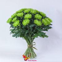 купить Хризантема крупная зеленая поштучно в Кишинёве