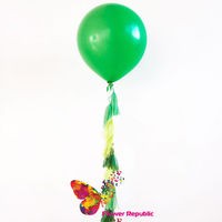 купить Большой латексный зеленый  шар 91 см с гирляндой тассел в Кишинёве