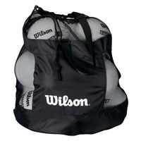 купить Сумка Wilson ALL SPORTS BALL BAG WTB1816  (3405) в Кишинёве