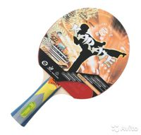 cumpără Paleta tenis de masa KARATE ST12401  (1292) în Chișinău