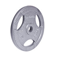 Disc din metal 15 kg d=30 mm 12712 (1177) inSPORTline