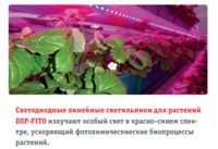 купить (U) LED Светильник Navigator 61 031 NEL-FITO-8-LED 594 mm в Кишинёве