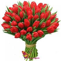 купить Красные тюльпаны в Кишинёве