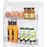 Холодильник Snaige FR 24SM-S2000F