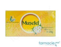 Ceai Larix Musetel 20g*20 pliculete