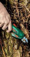 Ножницы садовые Verto 52G300