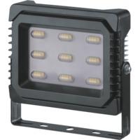 купить (a2) LED (30Wt) NFL-P-30-4K-IP65 в Кишинёве