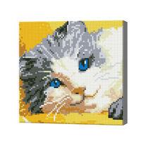 Голубоглазый котик, 20x20 см, алмазная мозаика
