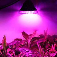 купить (BA) LED (10Wt) Лампа Navigator 61 202 NLL-FITO-A60-10-230-E27 в Кишинёве
