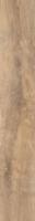 Gresie si faianta portelanata Harmony Beige 15*90