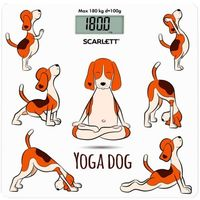Cintar de podea Scarlett SC-BS33E082