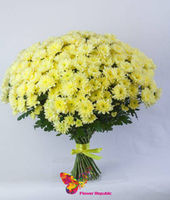 купить Хризантема кустовая желтая поштучно в Кишинёве