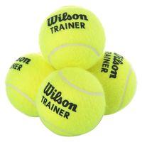 купить Мяч для большого тенниса WILSON TRAINER TBAL WRT131100 (1053) в Кишинёве
