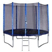 купить Батут Set 1.80 m Spartan 982 (125 kg) сетка+лестница (3690) в Кишинёве