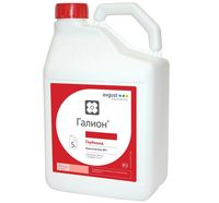 Галион - гербицид для защиты посевов рапса и капусты - Август
