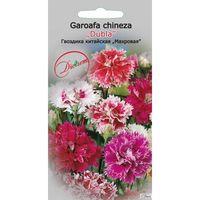 cumpără 1209 30 000 Seminte de Garoafa Chinezeasca 0.3gr în Chișinău