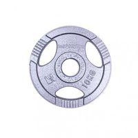 Диск металлический 10 кг d=50 мм inSPORTline 12704 (2735) (под заказ)