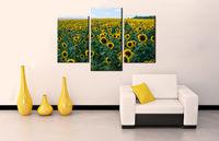 Картина напечатанная на холсте - Картина Триптих Природа 0004 / Печать на холсте