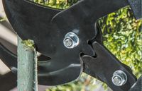 Ножницы садовые Verto 15G253