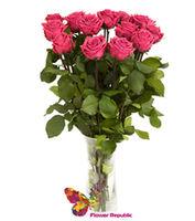 Букет из 11 роз цвета Фуксия -70-80 см