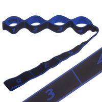 купить Ленточный эспандер Record Elastiband FI-1719 (резина, 90 см) (3312) в Кишинёве