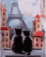 Pictura pe numere 40x50 Cuplu de pisici VA0902