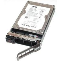 2TB 7.2K RPM NLSAS 12Gbps 512n, Hot-plug Hard Drive,CusKit 3.5in Dell