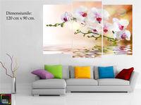 Картина напечатанная на холсте - Триптих орхидея 0001