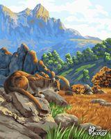 Pictura pe numere  40x50 H119 Lanț muntos