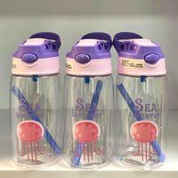 Бутылка для воды 480 мл ZZ-01 (5716)