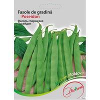 cumpără Seminte de Fasole de gradina verde Poseidon 20 gr în Chișinău