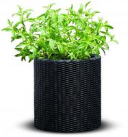 Curver Cylinder Planter S Anthracite(212425)