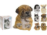 Собака декоративная разных пород H13.5cm, 10Х10cm