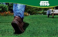 Спарринг - Семена травы для газонов (смесь) - Семилас Фито